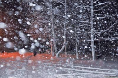 Завтра возможен сильный снег в Рязанской области - Гидрометцентр РФ