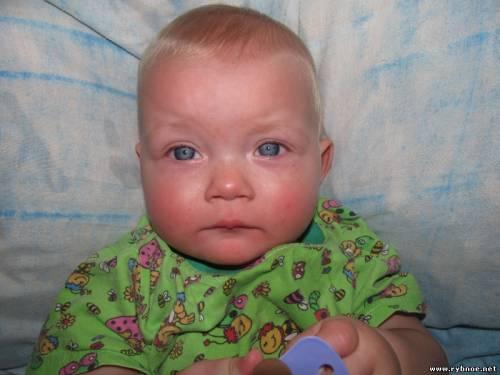 Мать потерявшегося ребенка сообщила УМВД, что оставила сына на попечение знакомого