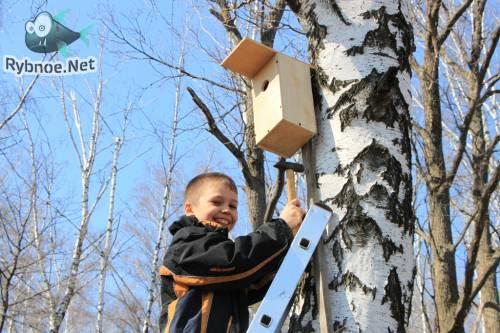 Воспитанники ДЮСШ Звезда провели акцию домики для перелетных птиц 11 апреля