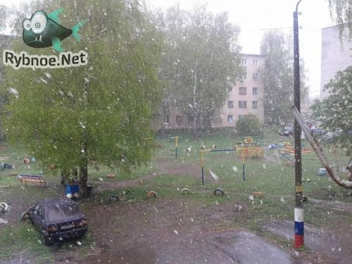 Бывает и в Рыбном снег 7 мая выпадает. Видео и фото