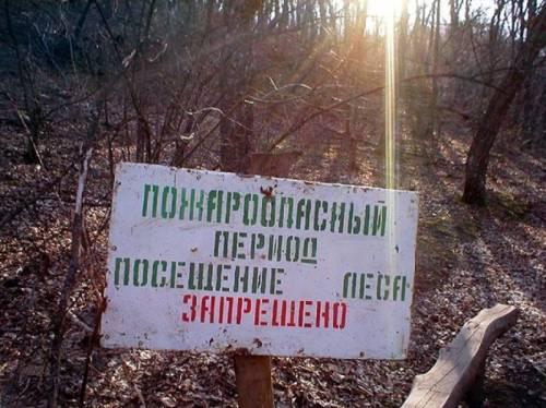 МЧС: в Рыбновском районе высокий класс пожароопасности, и еще в девяти