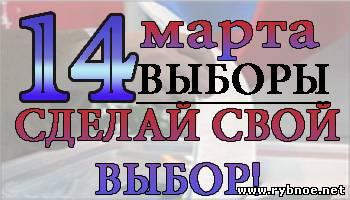 Выборы в Рыбном