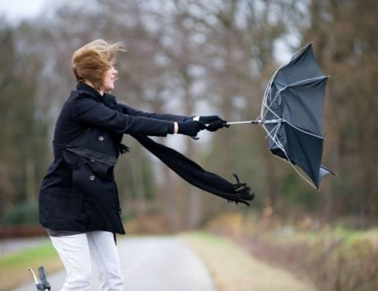 На завтра в Рязанской области прогнозируется сильный ветер
