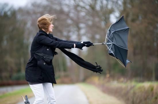 Завтра в Рязанской области ожидается ветер до 23 метров в секунду