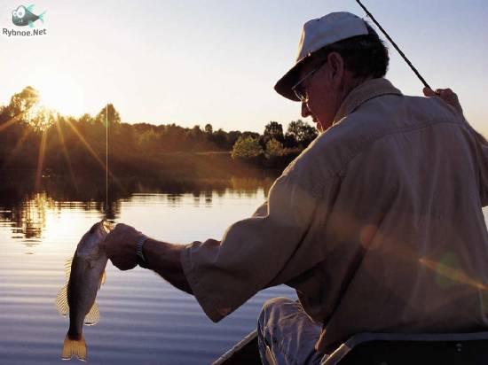 Любителям рыбалки посвящается! Чемпионат г. Рыбное по рыболовному спорту