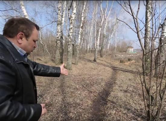 Вырубка березовой аллеи в Рыбном. Видео