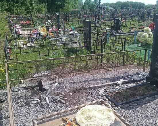 Неизвестные воруют туи на кладбище