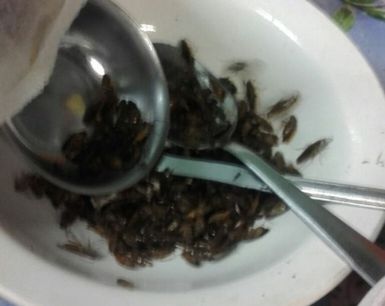 «Общажные тараканы» на Юбилейной
