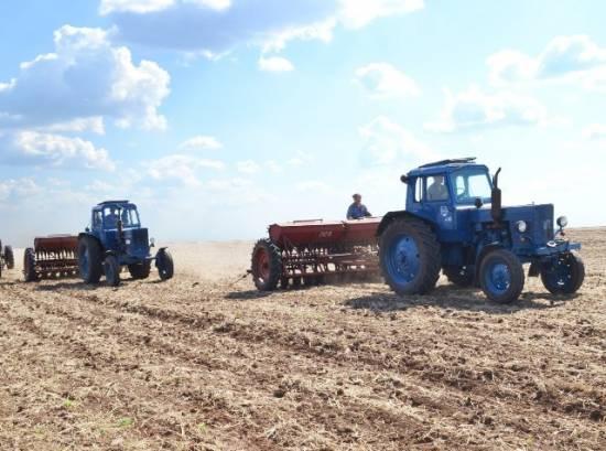 Рязанская область вышла на первое место ЦФО по плану ярового сева