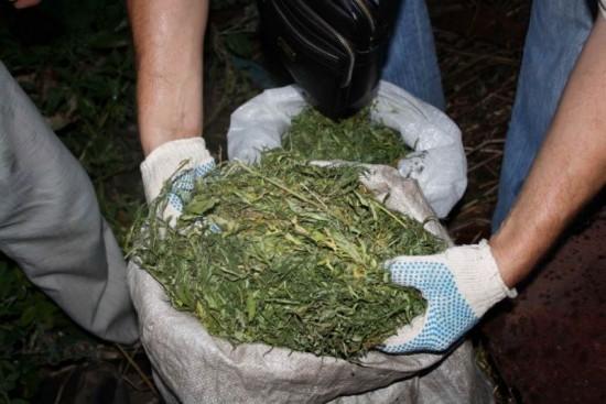 В Рыбном задержали мужчину почти с 2 кг марихуаны