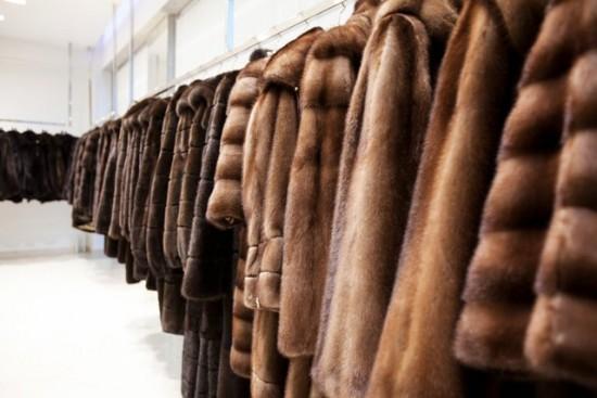 В Рыбном пройдет выставка «Богатство меха»