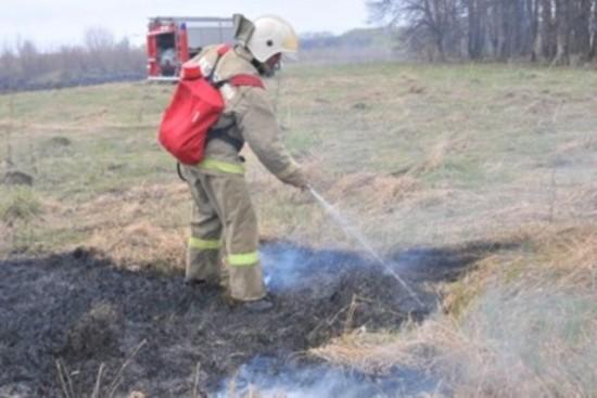 В Рыбновском районе произошло четыре возгарания сухой травы