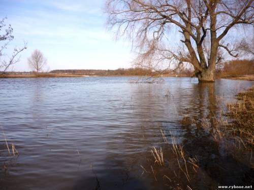 Весенний паводок начнется в начале (середине) апреля