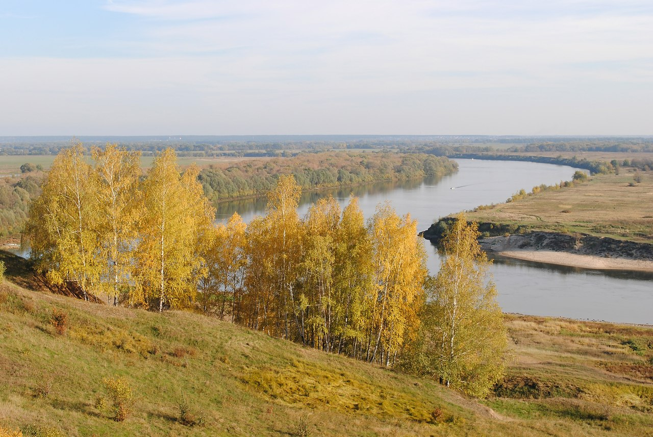 Усадьба Никитинских в селе Костино Рыбновского района Вид из усадьбы на реку Оку