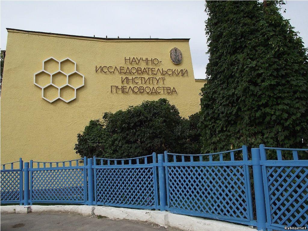 Всероссийский научно-исследовательский институт пчеловодства г. Рыбное Рязанская область