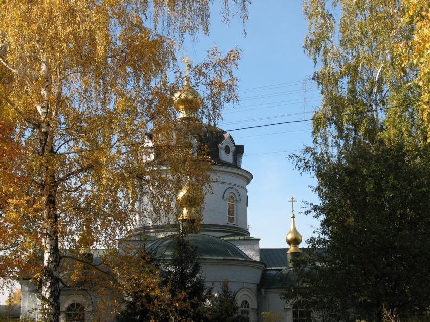 Церковь Космы и Дамиана. Летово Рыбновский район Рязанская область