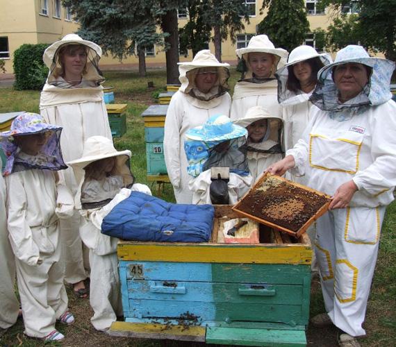 Музей-выставка НИИ пчеловодства